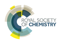 Logo Royal Society of Chemistry